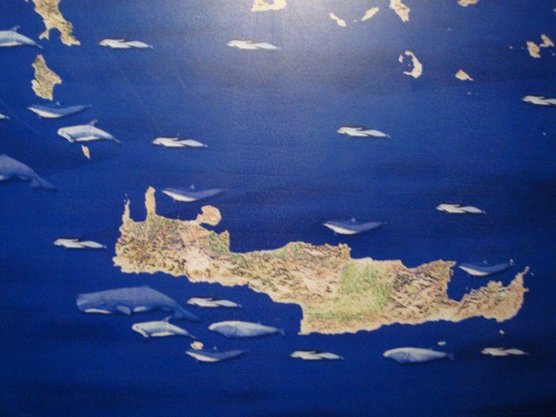 078. Sea kingdom around Crete - Cretaquarium (Θαλασσόκοσμος)