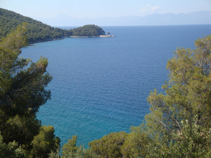 Two famous pine trees of Skopelos (Σκόπελος) - This cape with two pine trees near Aghnondas beach (Αγνώντας) became a noticeable landmark of Skopelos Island after Mamma Mia movie.