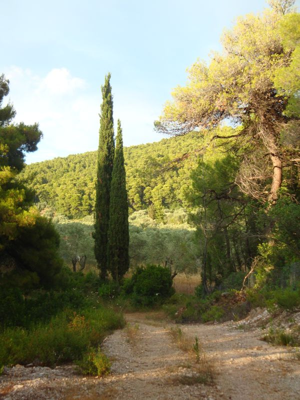 041. Walking in the surrounding area of Panormos - Πάνορμος