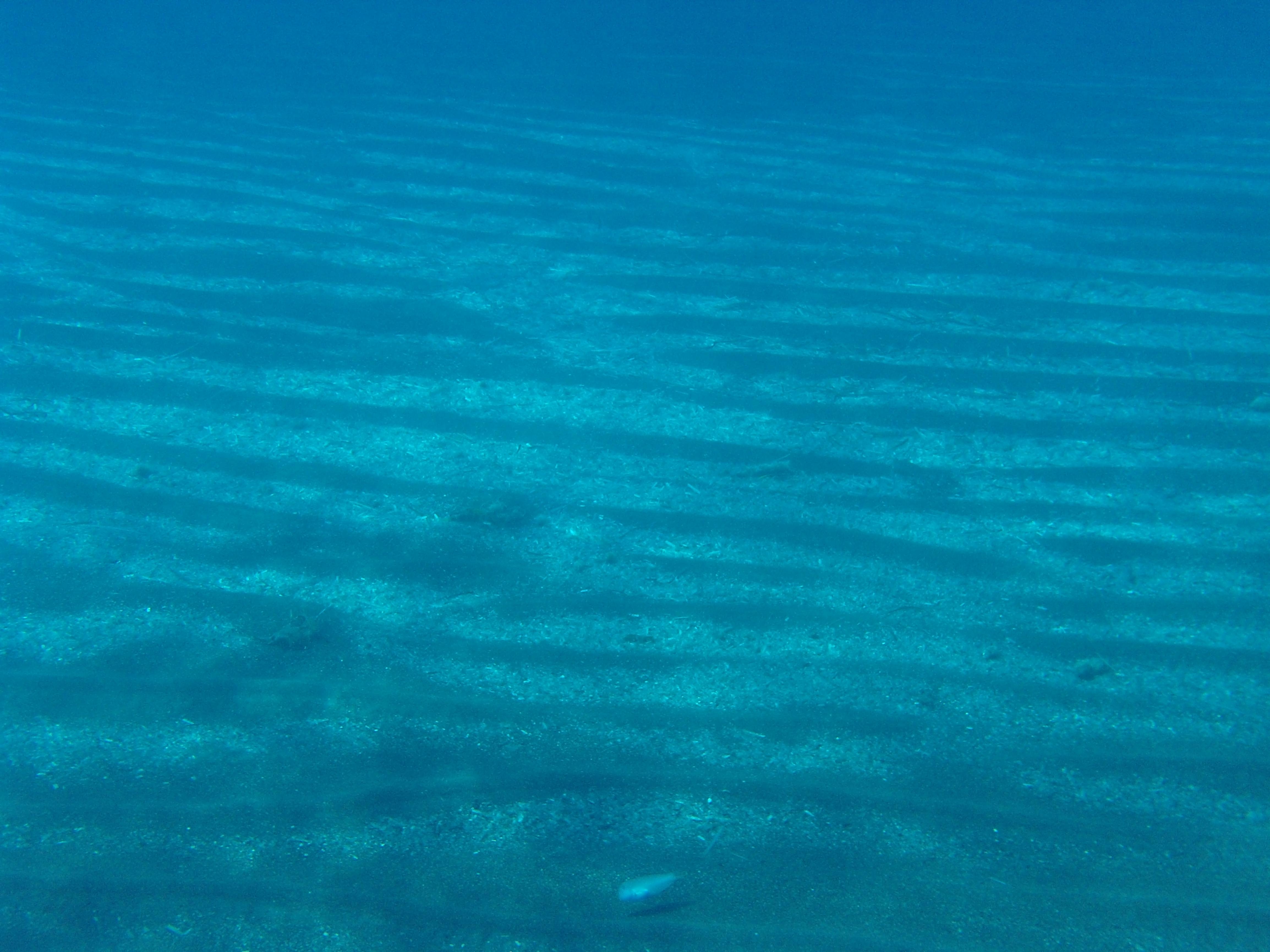 54. Stripes of white seaweeds on the black sand - Perissa beach, Santorini