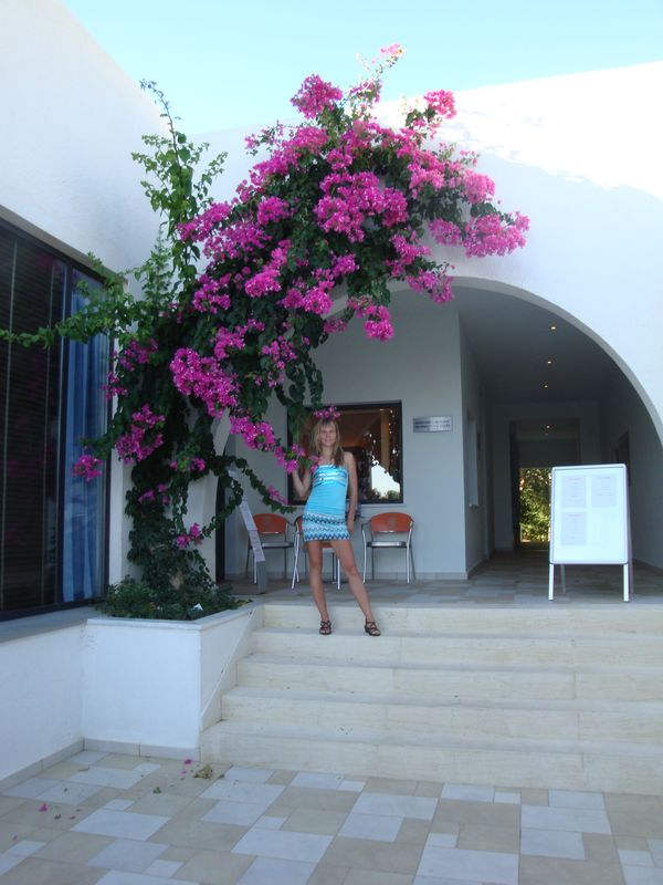 036. Purple ark - Bougainvillea. Timeshare near Damnoni beach, South Crete.