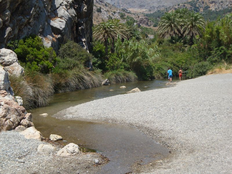 075. Mountain river with palm-trees - Souda beach (Σούδα). The very right edge of Plakias bay, South Crete.